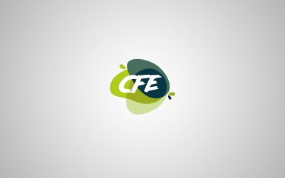 Logo CFE France Conseil Fluide Equipement